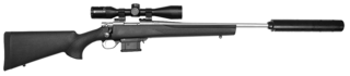 Howa .223 Mini Action Stainless with Panamax 3-9x40 with Suppressor