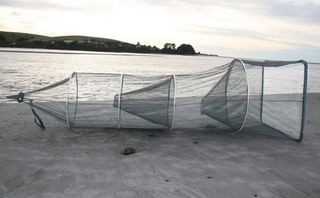 Fishfighter Whitebait Net Sock With Two Traps