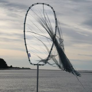 Fishfighter Whitebait Net 10' Scoop With Trap