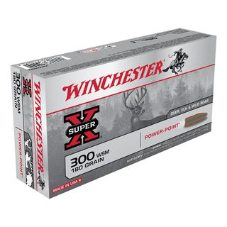 Winchester SuperX .300WSM 180gr PP (20)